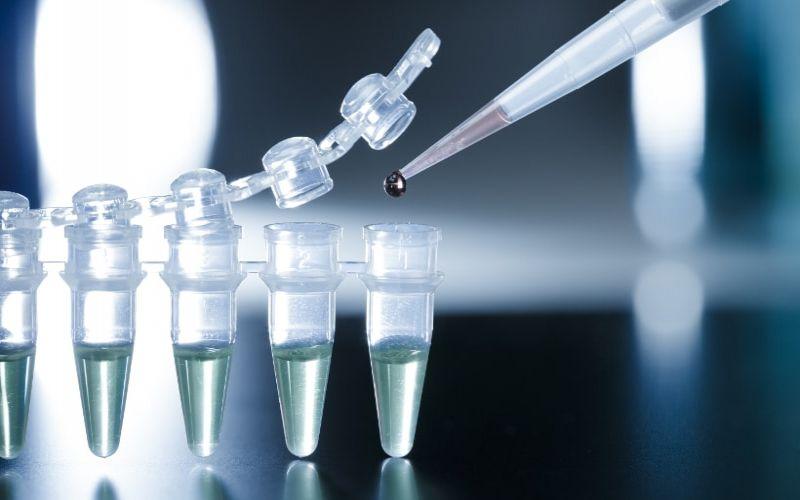 komórki macierzyste laboratorium
